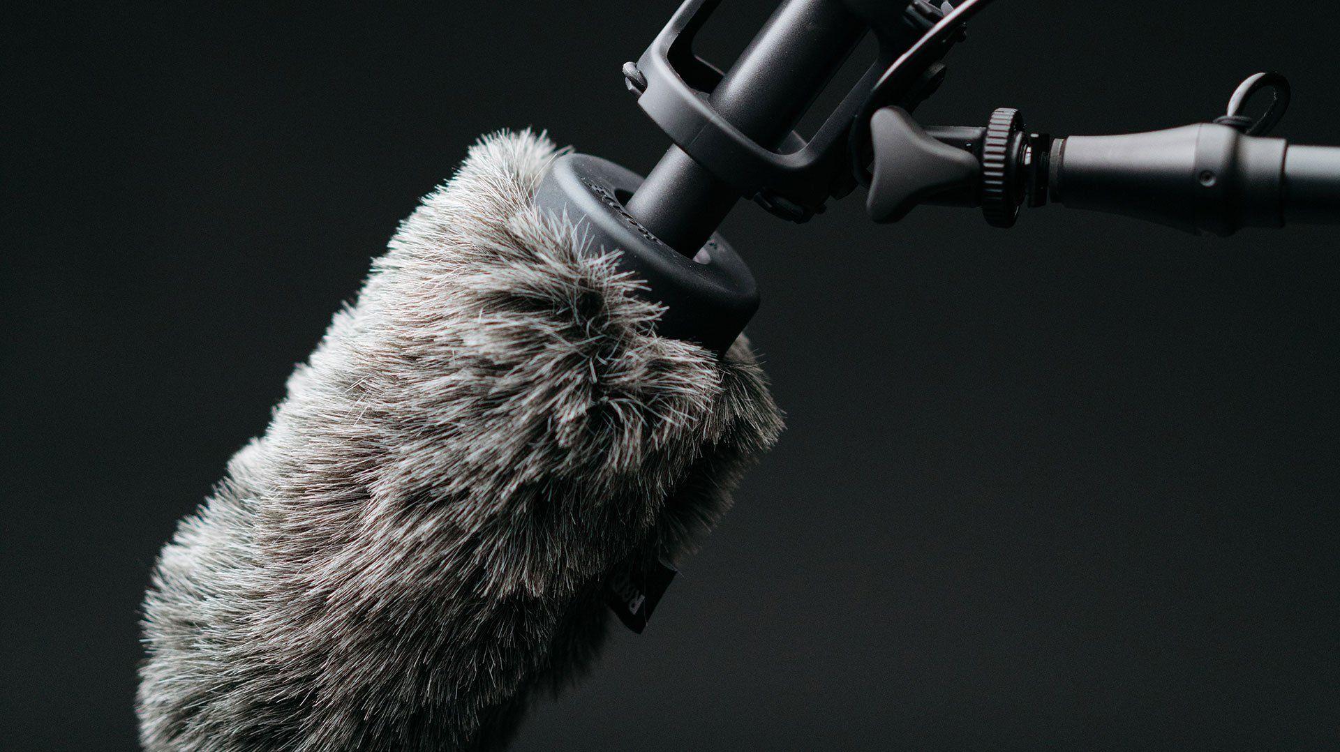 video-mic