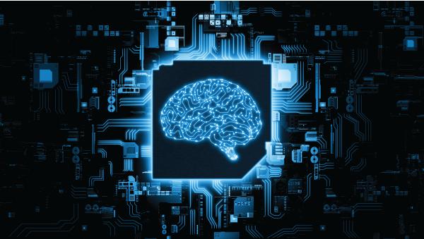 AI ML machine learning | Botkeeper